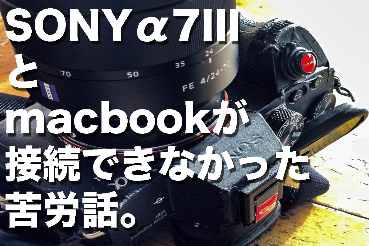 f:id:fujikixblog:20200102101006j:plain