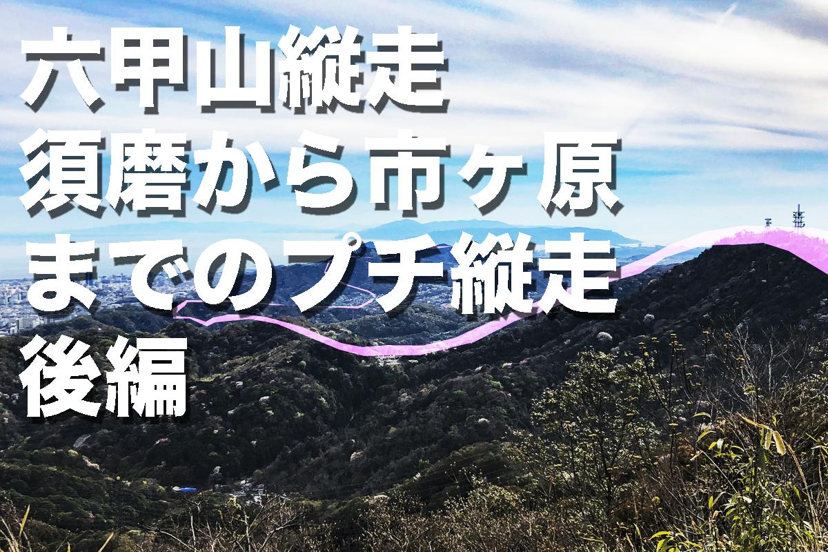 f:id:fujikixblog:20200102101034j:plain