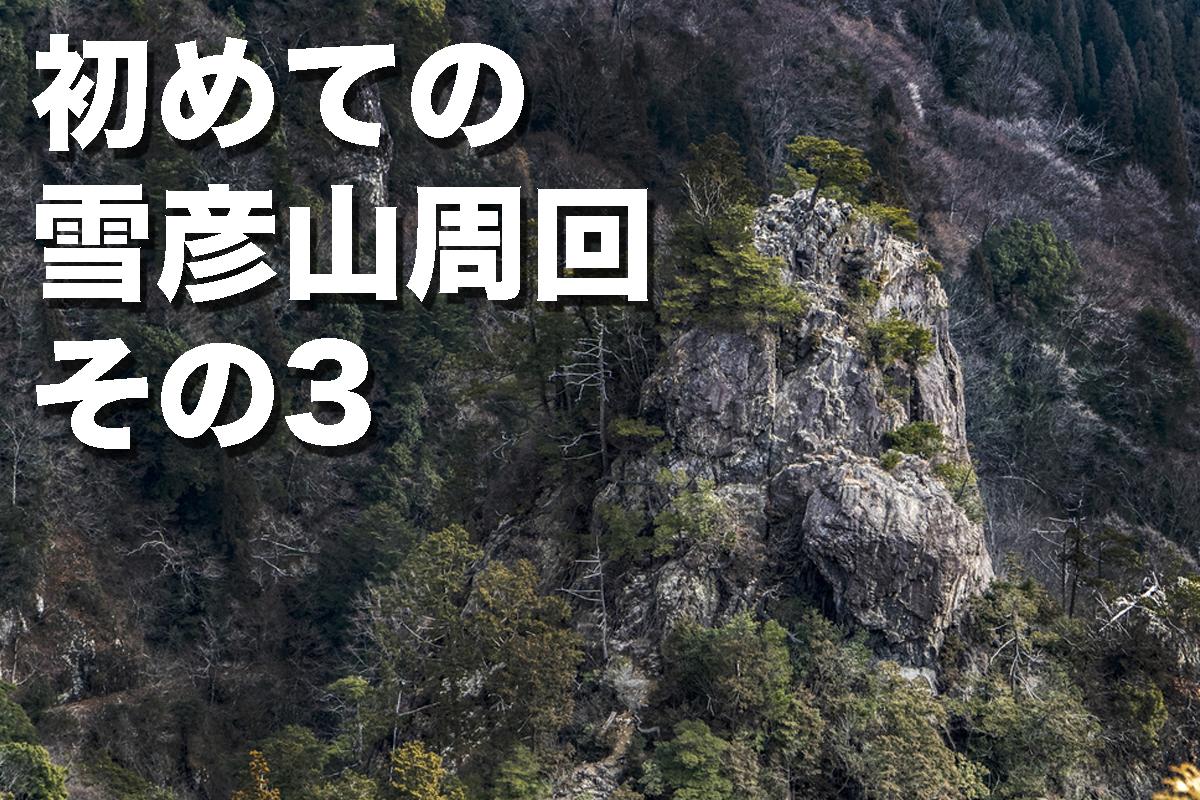 f:id:fujikixblog:20200102101039j:plain