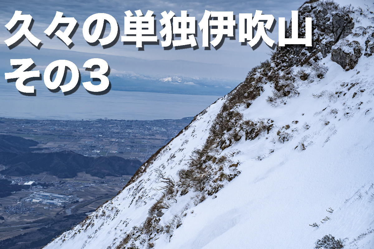 f:id:fujikixblog:20200102101043j:plain