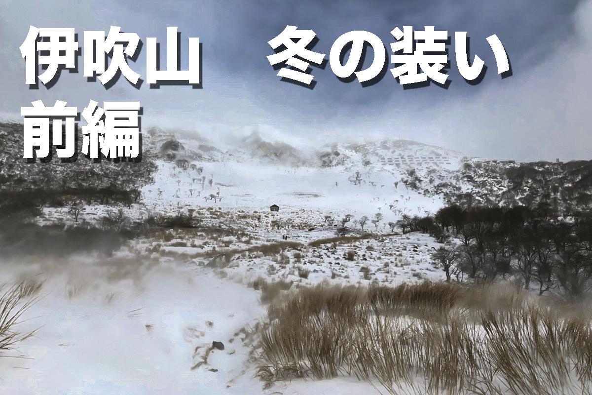 f:id:fujikixblog:20200102101055j:plain