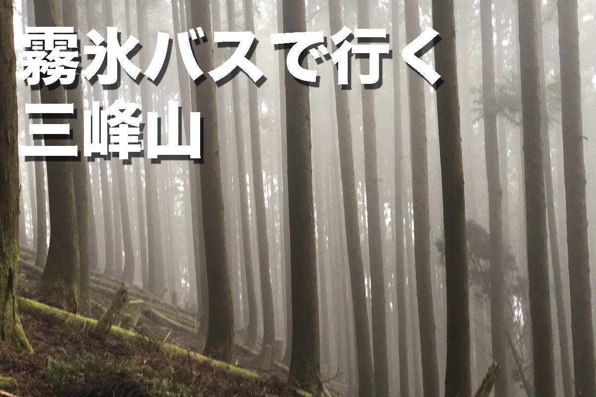 f:id:fujikixblog:20200102101056j:plain