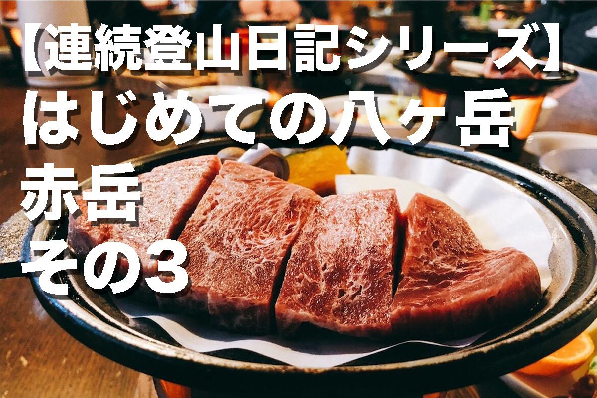 f:id:fujikixblog:20200102101059j:plain