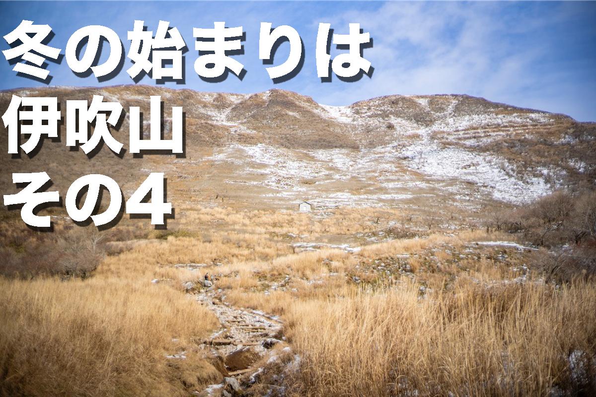 f:id:fujikixblog:20200102101121j:plain
