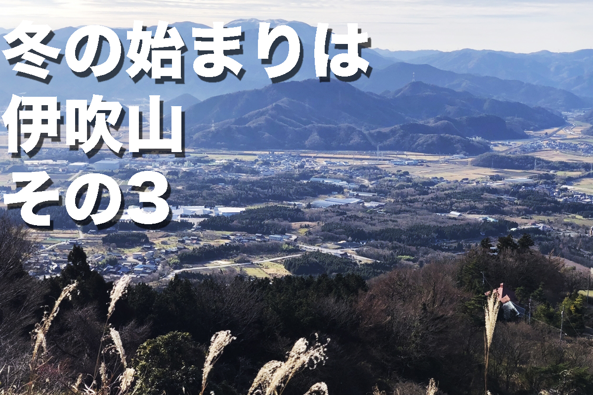 f:id:fujikixblog:20200102101122j:plain