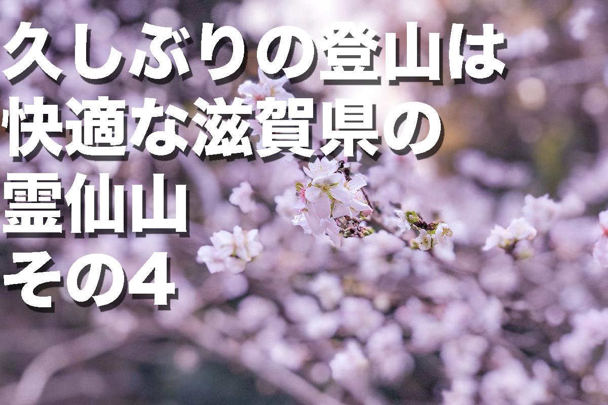 f:id:fujikixblog:20200102101125j:plain