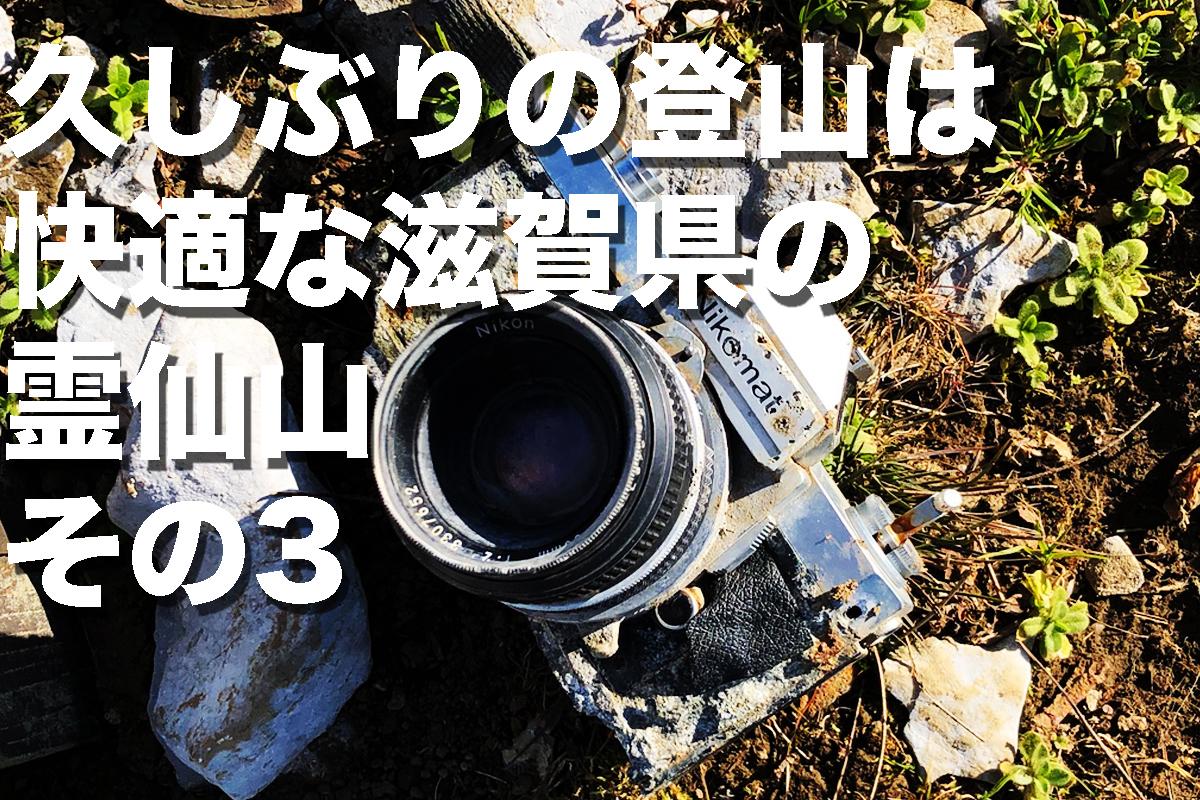 f:id:fujikixblog:20200102101126j:plain