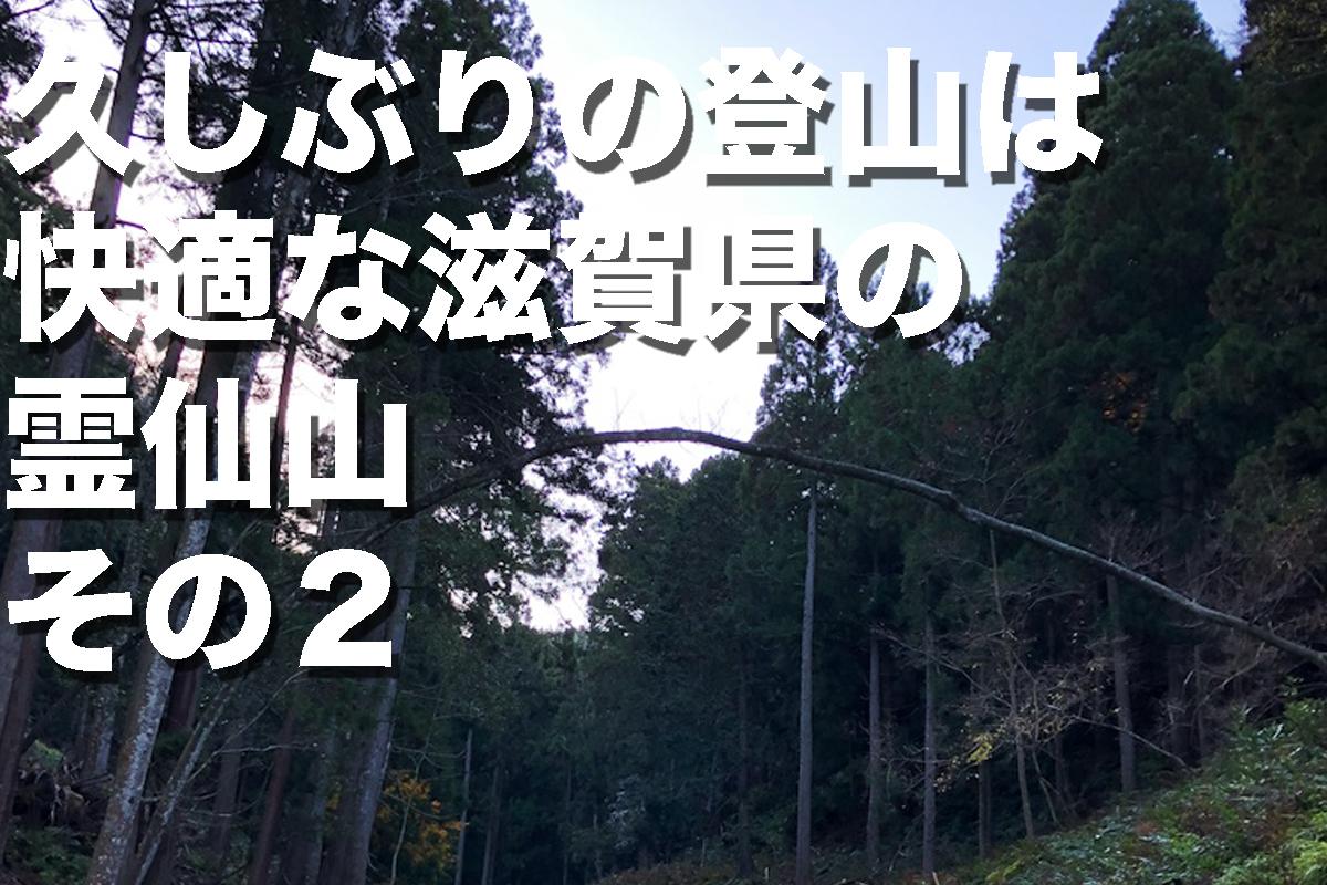 f:id:fujikixblog:20200102101127j:plain