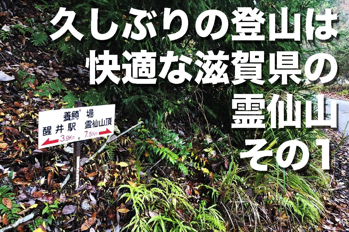 f:id:fujikixblog:20200102101128j:plain