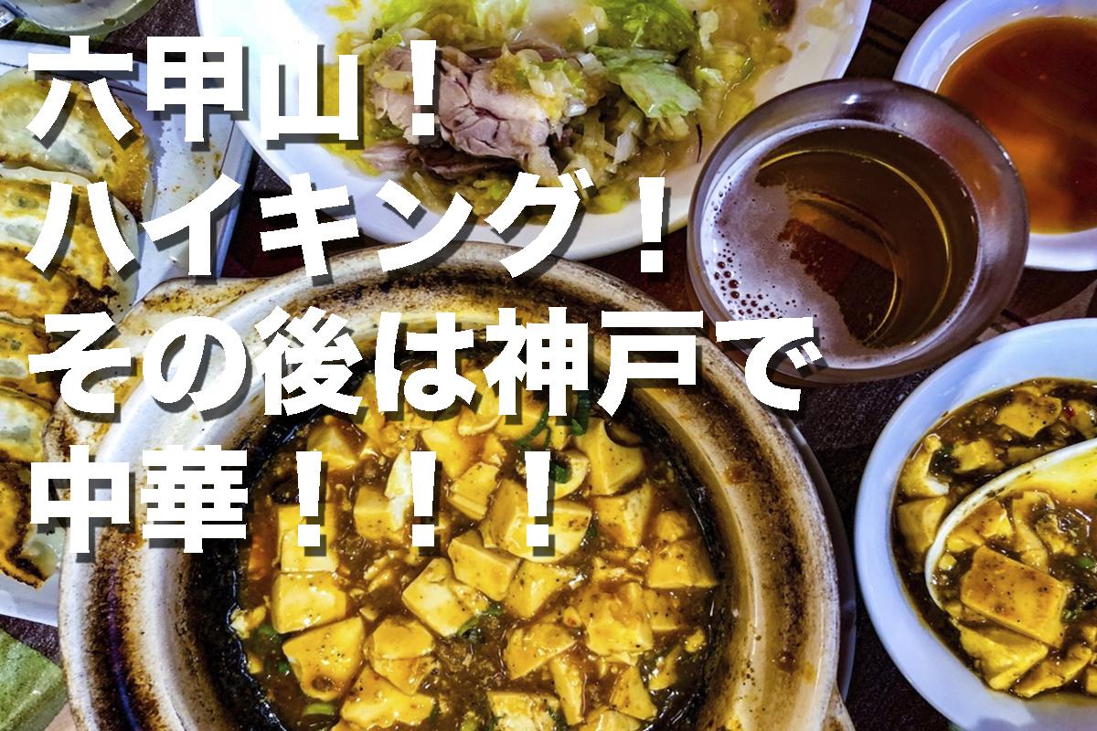 f:id:fujikixblog:20200102101130j:plain