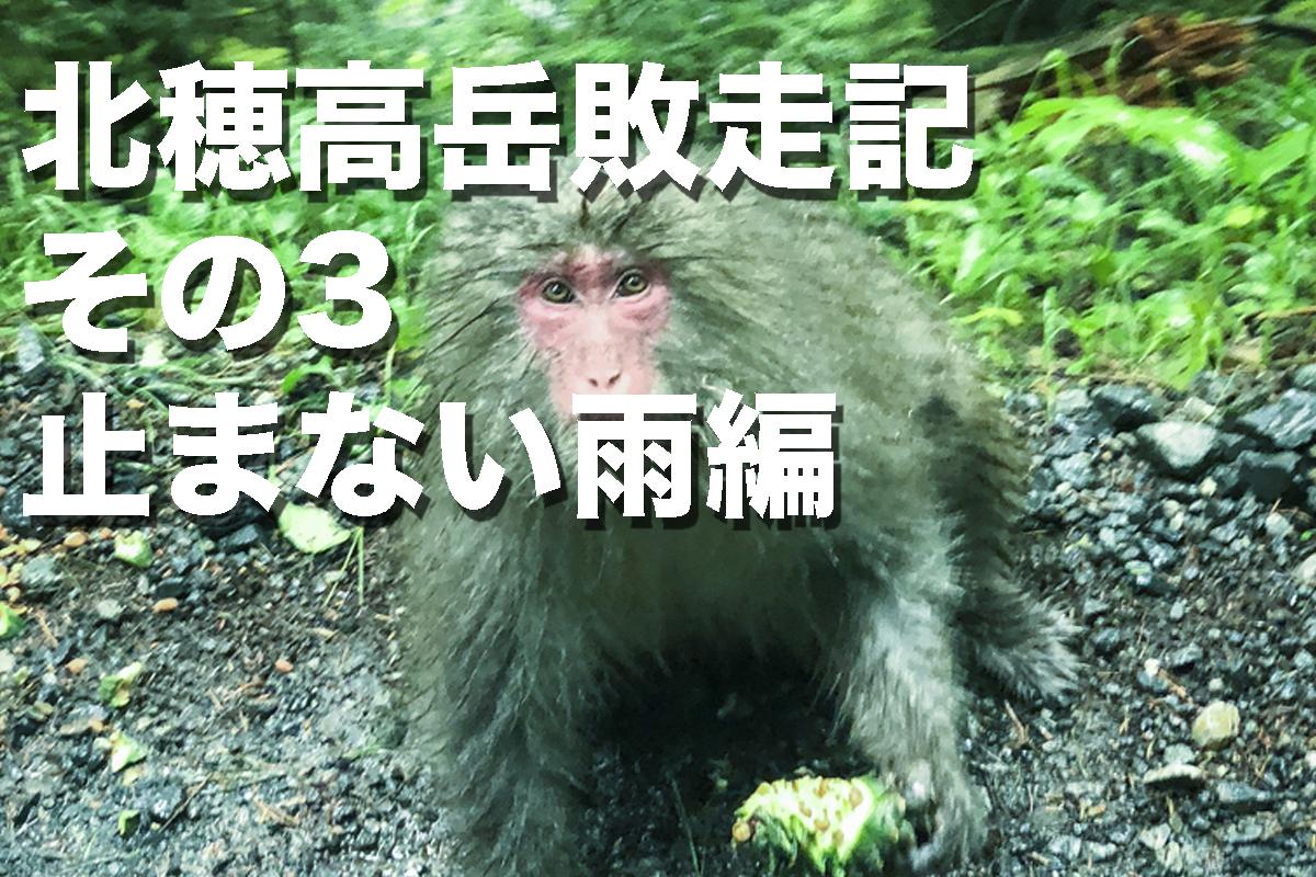 f:id:fujikixblog:20200102101139j:plain