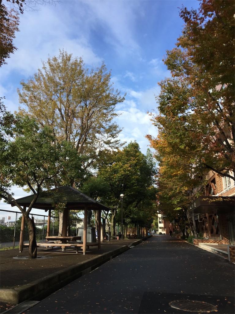 f:id:fujiko-aroma:20181106121848j:image