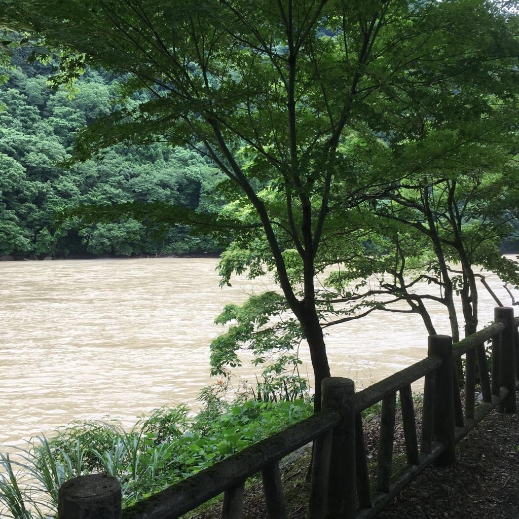f:id:fujikomama:20180708211003j:plain