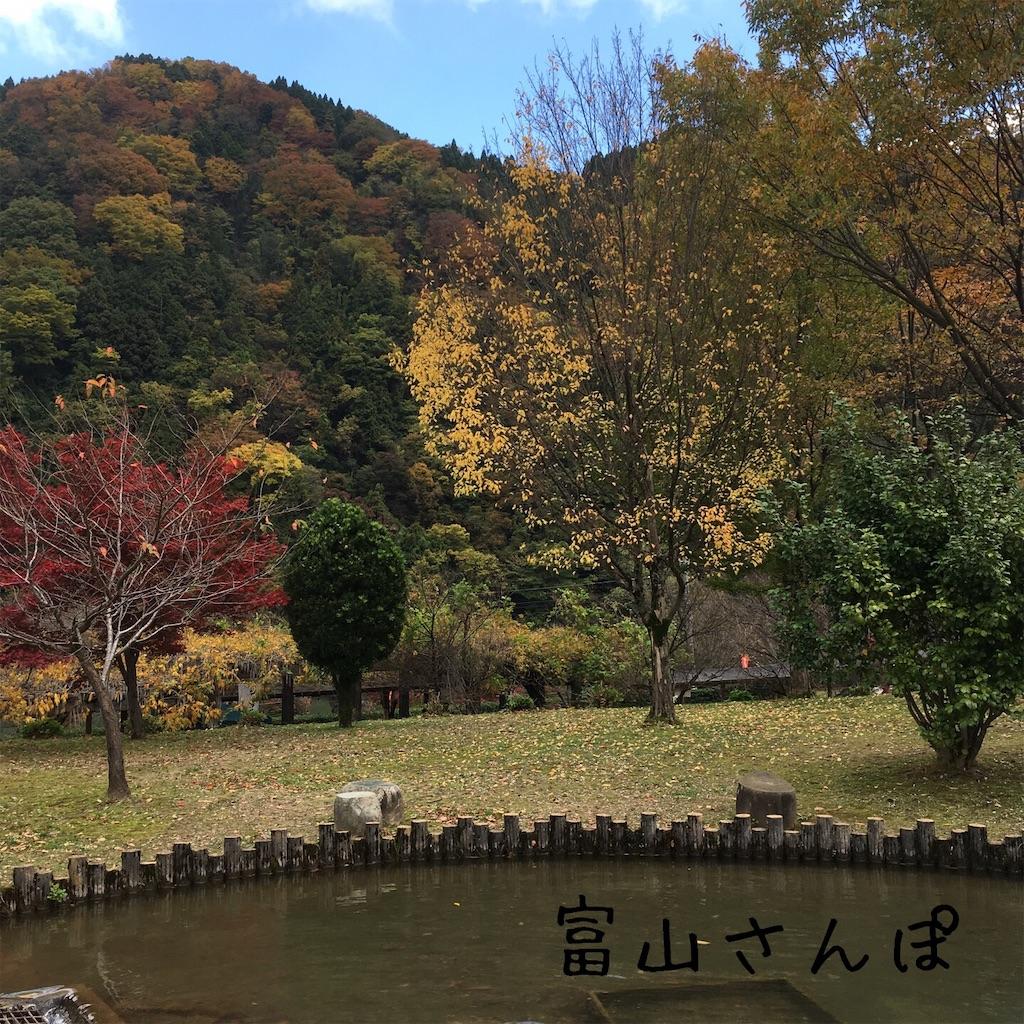 f:id:fujikomama:20181111122507j:image