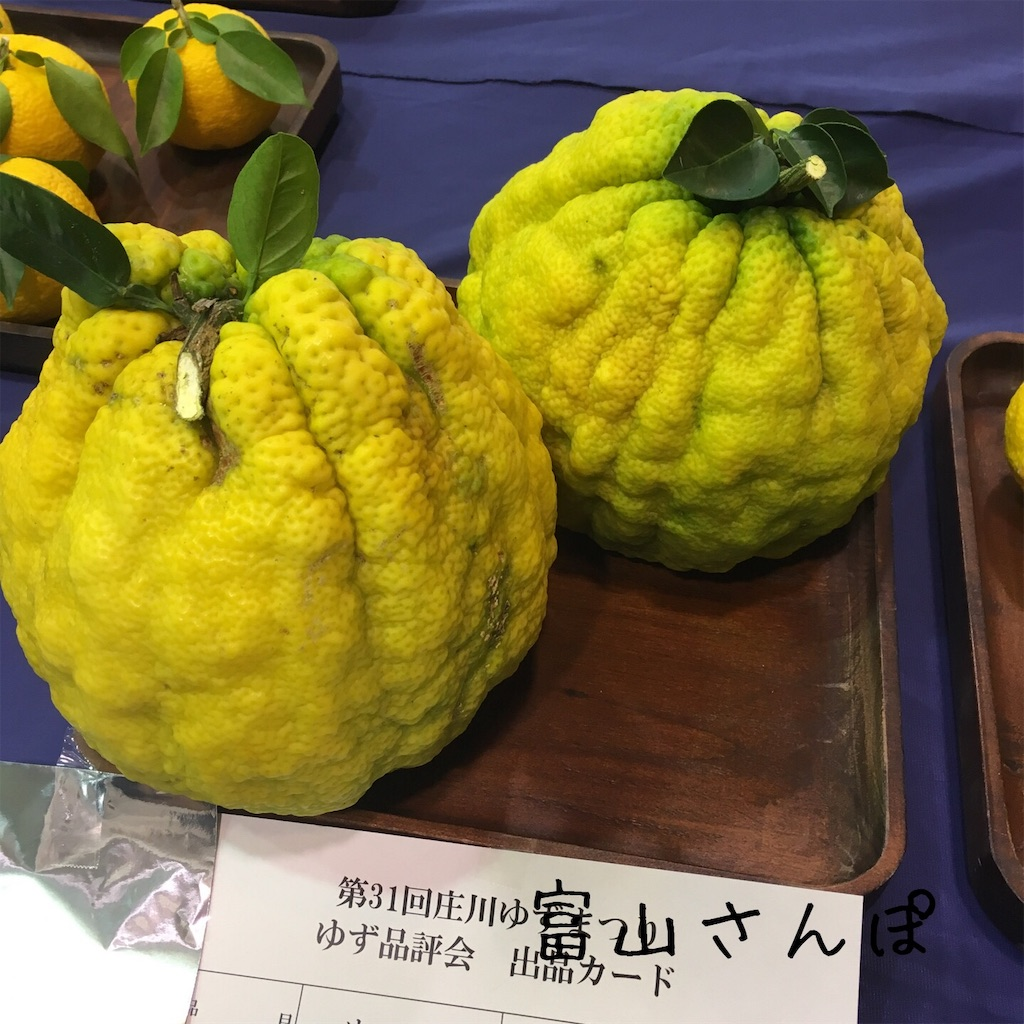 f:id:fujikomama:20181111123743j:image