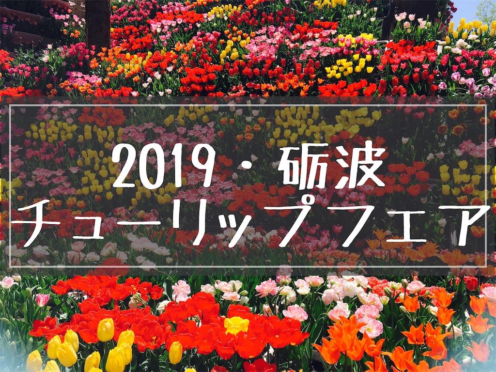 f:id:fujikomama:20190506170643j:plain
