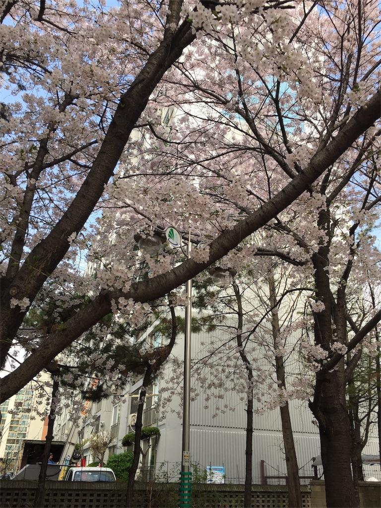 f:id:fujikorea:20170411130843j:image