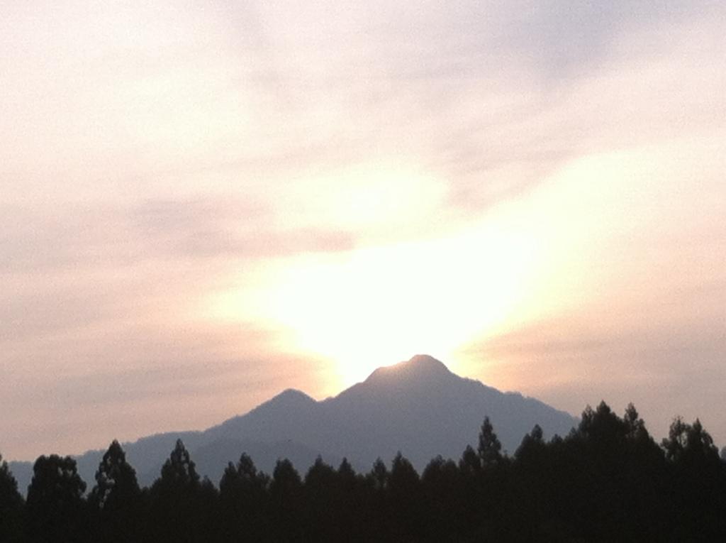 f:id:fujikumachan:20161101165901j:plain