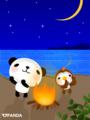 パンダと小鳥(キャンプファイヤー)