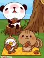パンダとりすと小鳥(どんぐり)