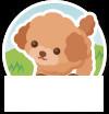 f:id:fujikup:20200628174948j:plain