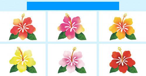 f:id:fujikup:20200809213114j:plain
