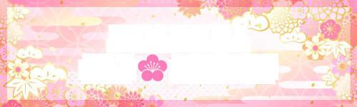 f:id:fujikup:20210204211900j:plain