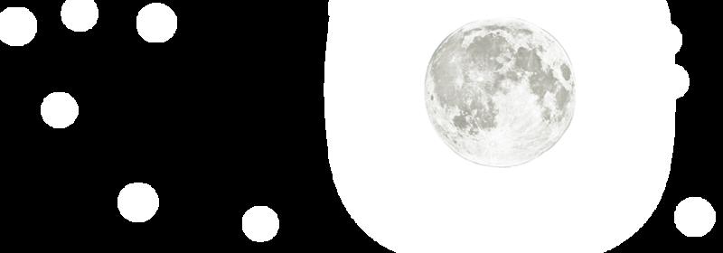 f:id:fujikup:20210206165813p:plain