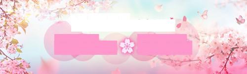 f:id:fujikup:20210220111544j:plain