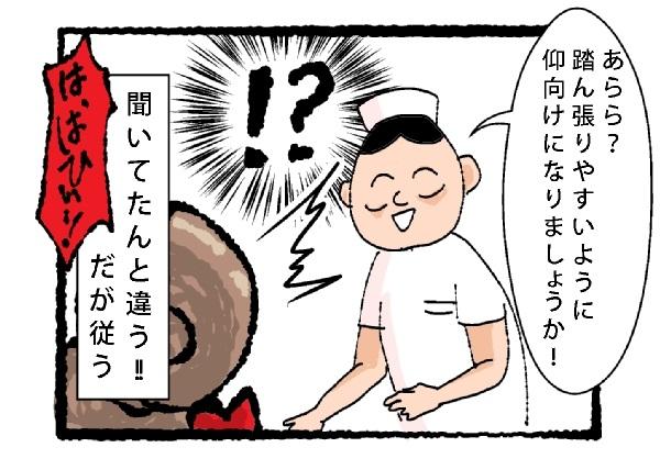 f:id:fujimarugukko:20181117171459j:plain