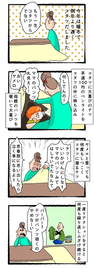f:id:fujimarugukko:20181205204130j:plain