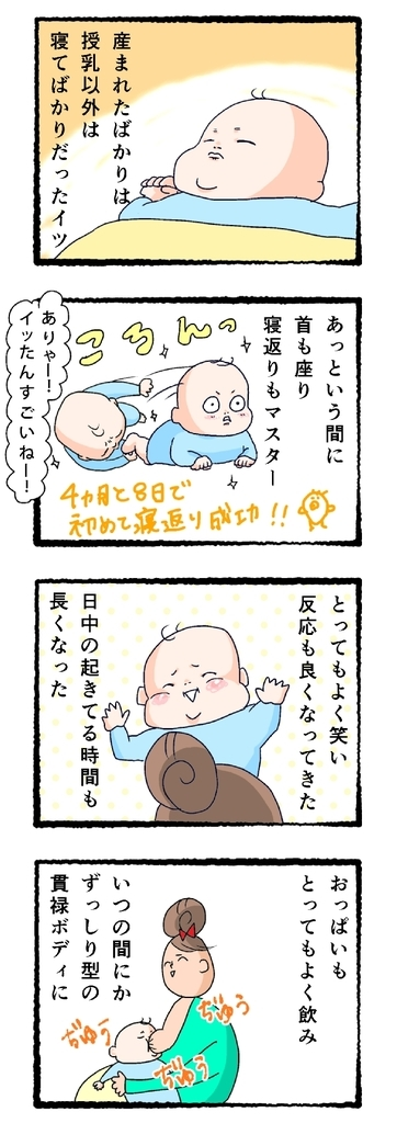 f:id:fujimarugukko:20190222001320j:plain