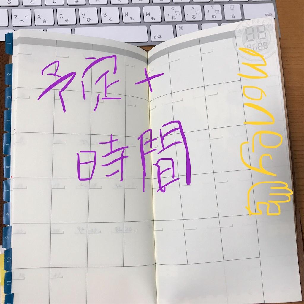 f:id:fujimineko0712:20190106210455j:plain