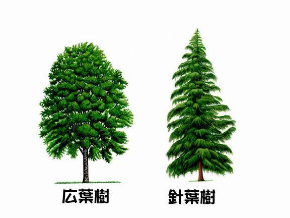 f:id:fujimokunetshop:20210322091008p:plain