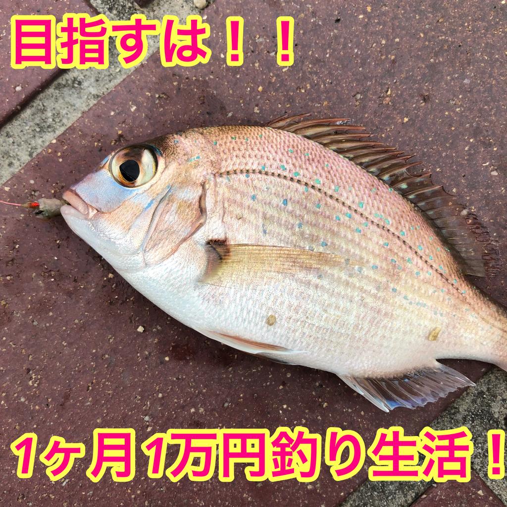 f:id:fujimoto505:20181012232005j:plain