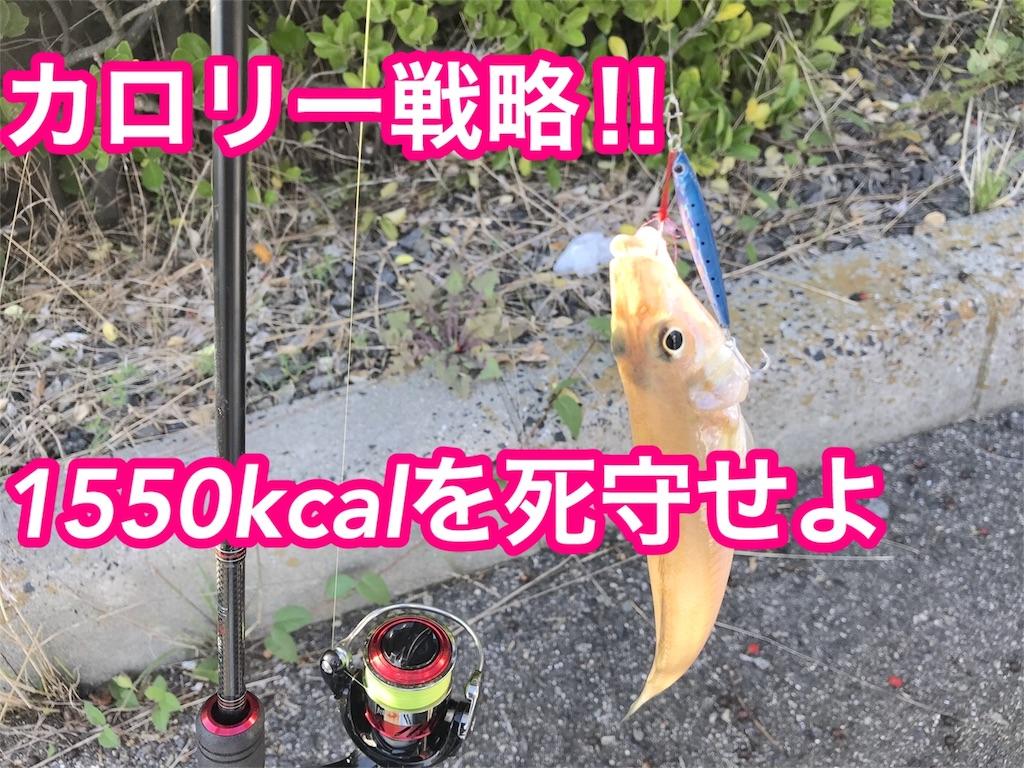 f:id:fujimoto505:20181015013657j:plain