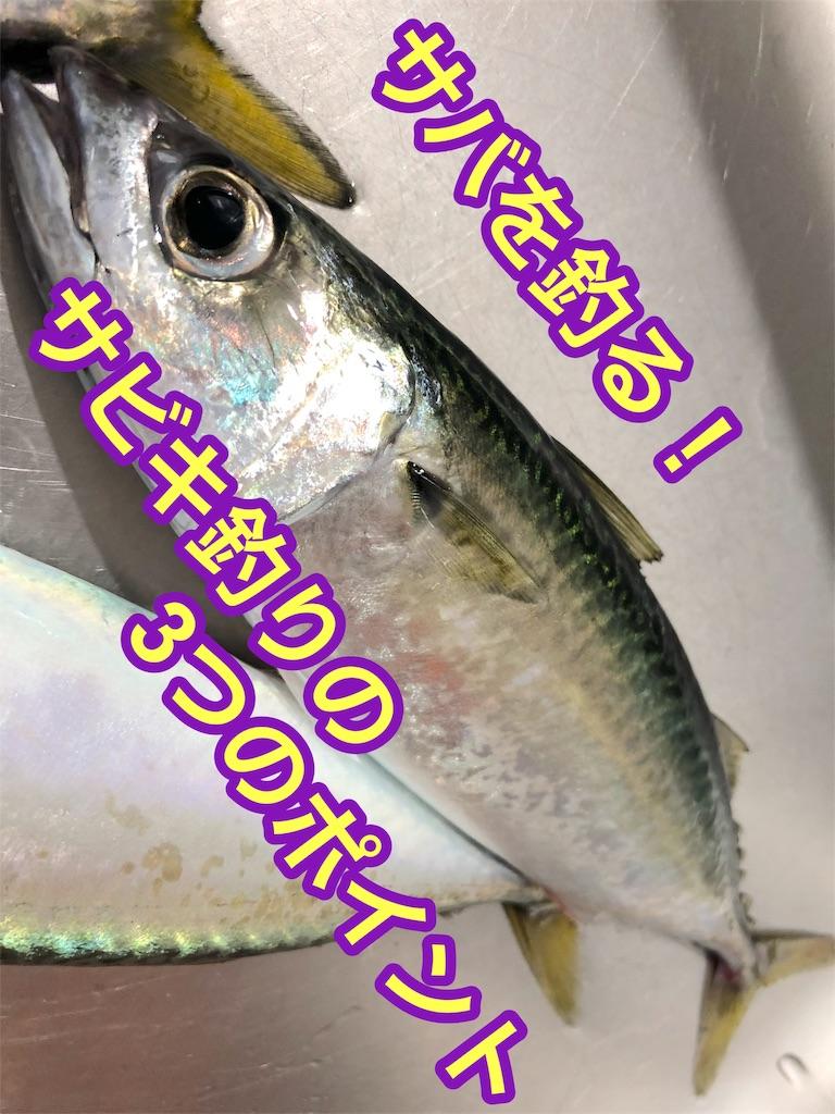 f:id:fujimoto505:20181023020120j:image