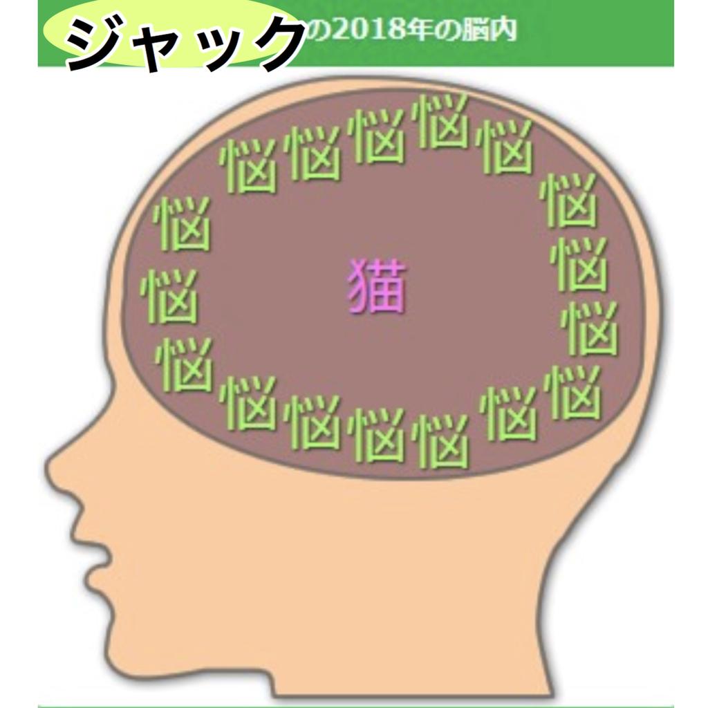 f:id:fujimoto505:20181027131558j:plain