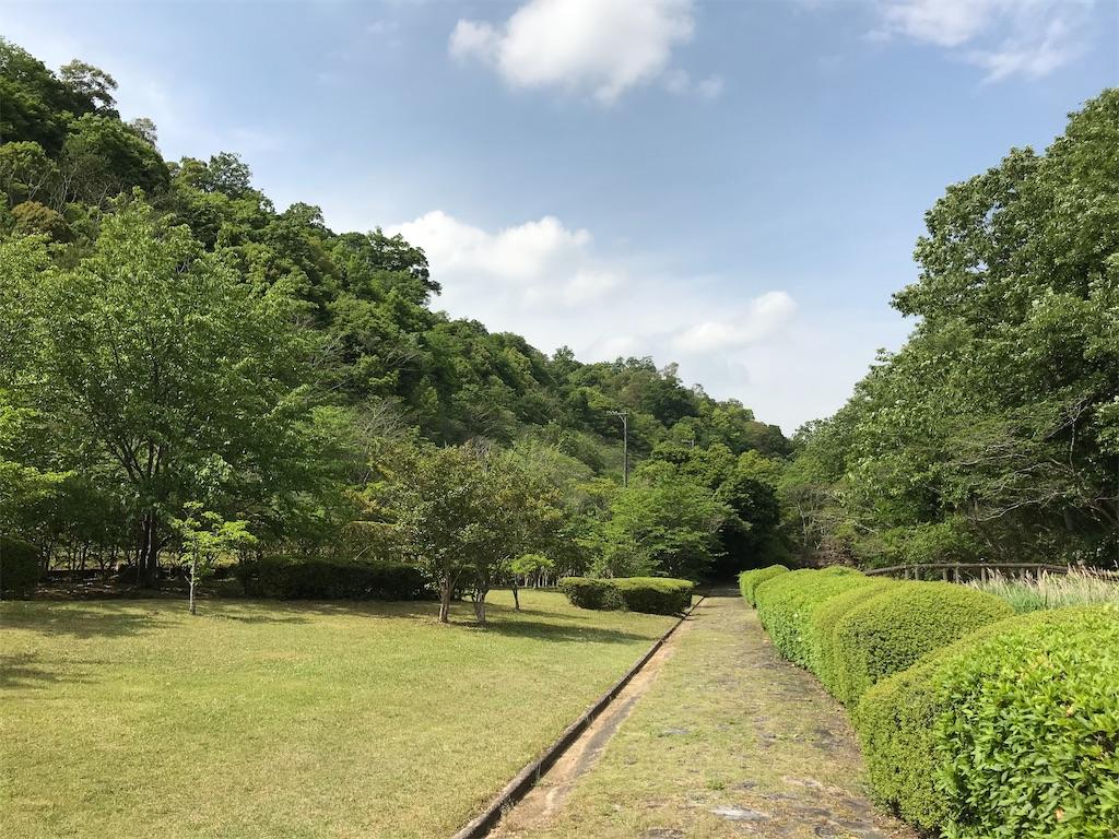 f:id:fujineko2002:20200517231642j:image
