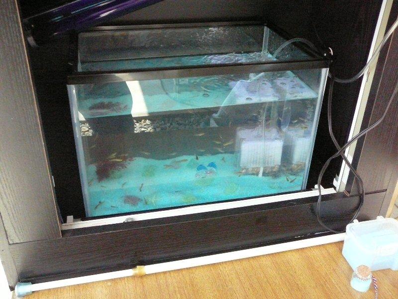f:id:fujino-kougyo:20100806234208j:image