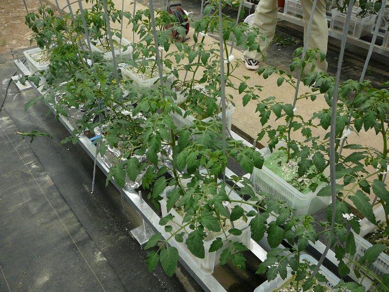 f:id:fujino-kougyo:20120817135945j:image