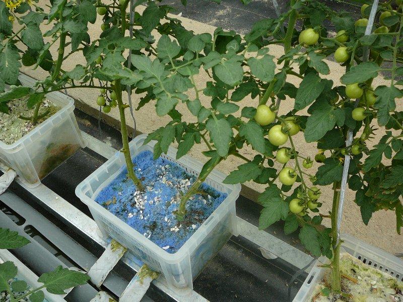 f:id:fujino-kougyo:20120817135946j:image