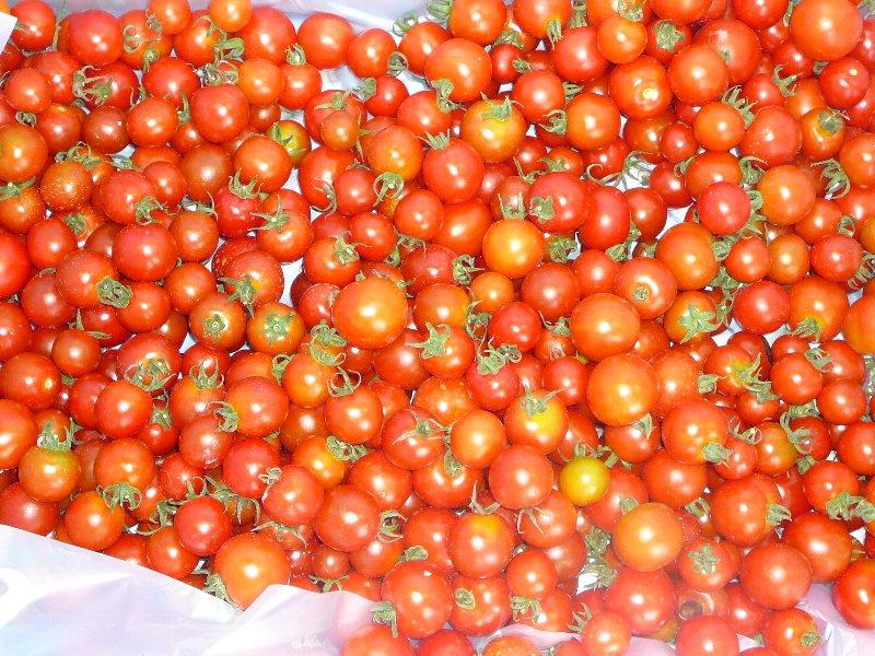 f:id:fujino-kougyo:20120817135950j:image