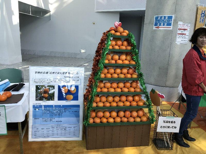 f:id:fujino-kougyo:20181116233604j:image