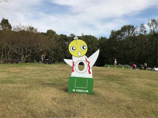 f:id:fujinosakura:20181022050029j:image