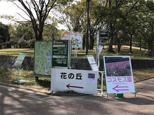 f:id:fujinosakura:20181022192655j:image
