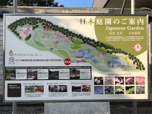 f:id:fujinosakura:20181023120250j:image