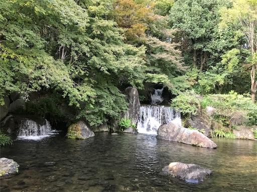 f:id:fujinosakura:20181023120314j:image
