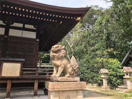 f:id:fujinosakura:20181023203038j:image