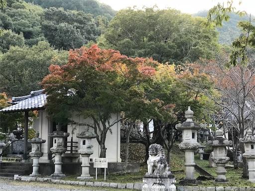 f:id:fujinosakura:20181027110014j:image